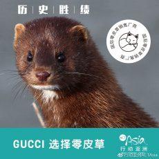 历史时刻! 全球顶尖奢侈品品牌GUCCI 宣布加入零皮草